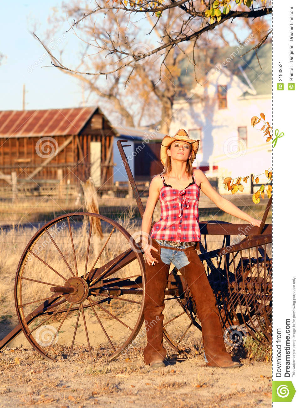 Ranch Hand Stock Image Image Of Autumn Rancher Farming