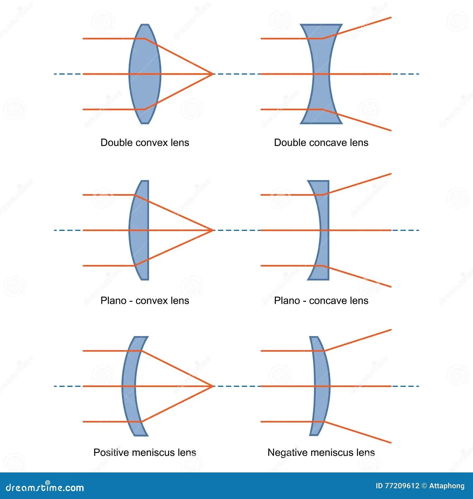 Ray Diagrams For Lenses Vector Stock Vector