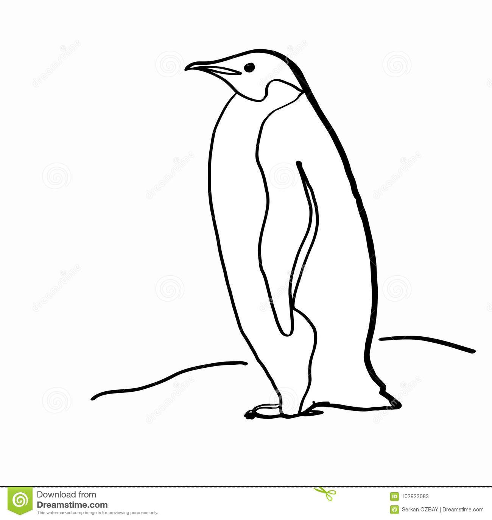 Realistyczny Pingwinu Rysunek Ilustracji