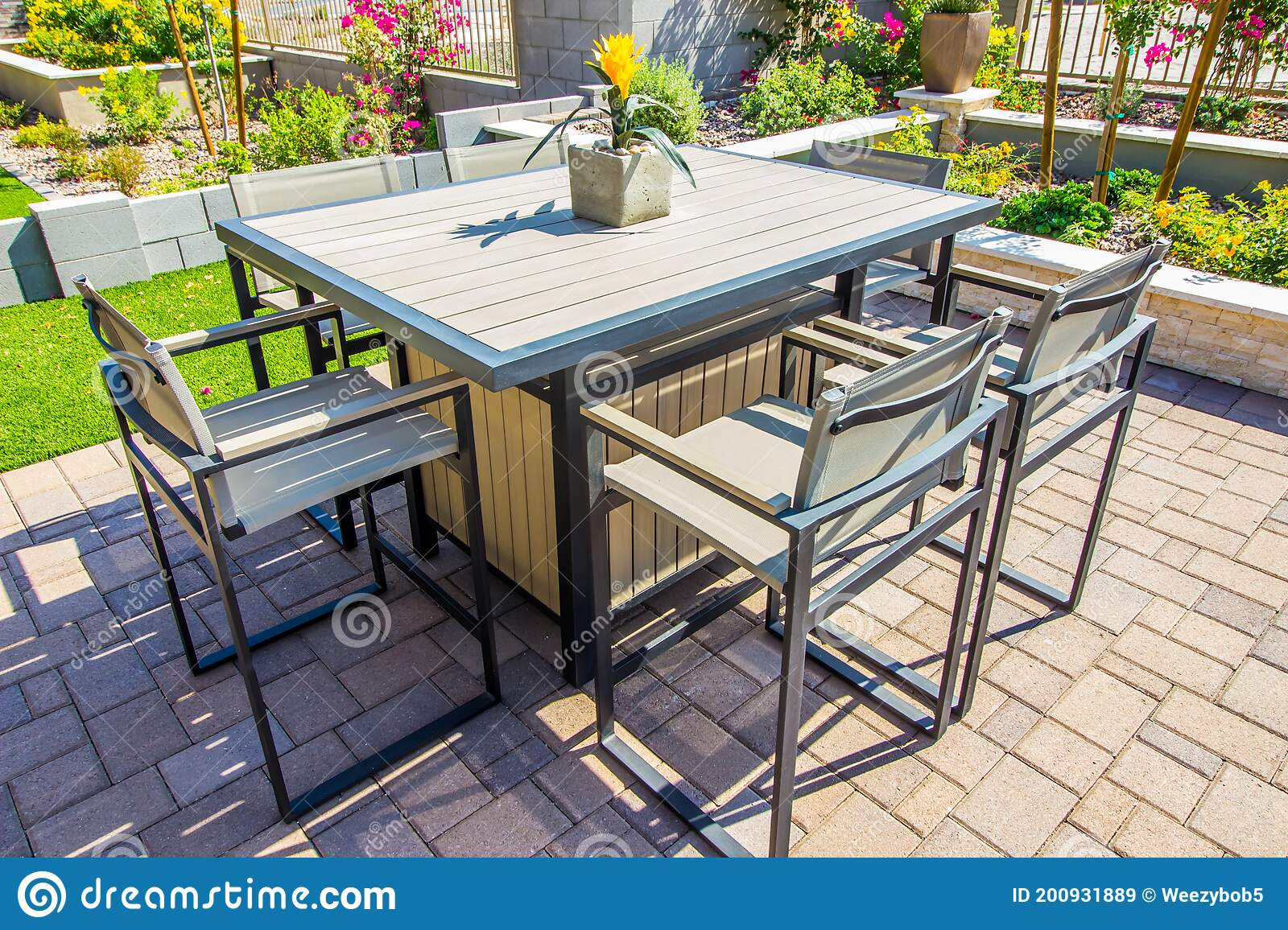 rear yard patio furniture including table and six chairs stock image image of shrubs pots 200931889