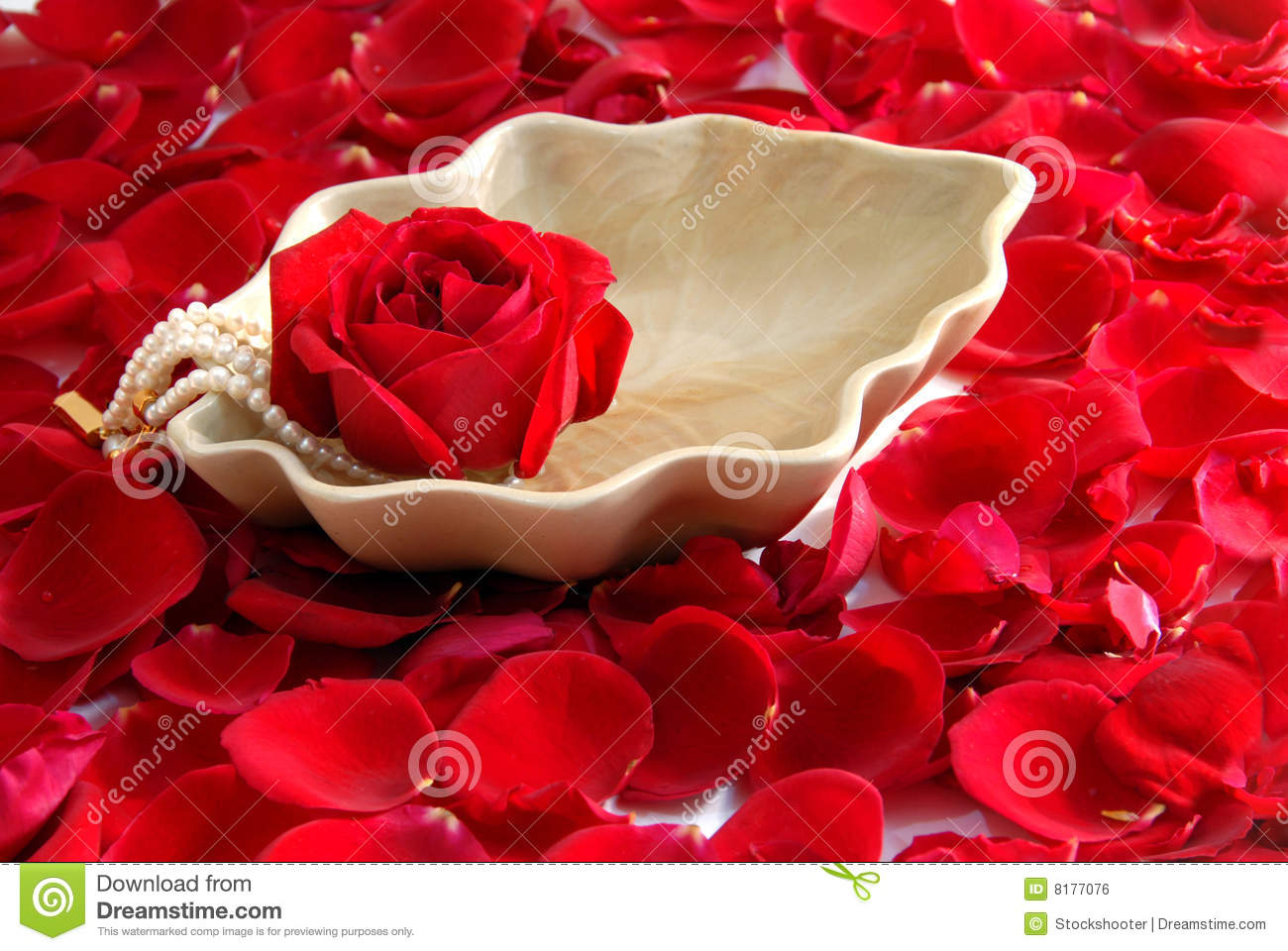 Red Rose Flower Petals Spa Aromatherapy Stock Photo   Image of pure     Red Rose flower petals spa aromatherapy  Pure  relaxation