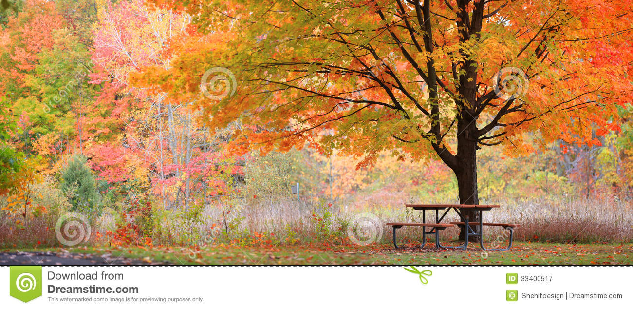 Relaxing Autumn Scene Royalty Free Stock Photography