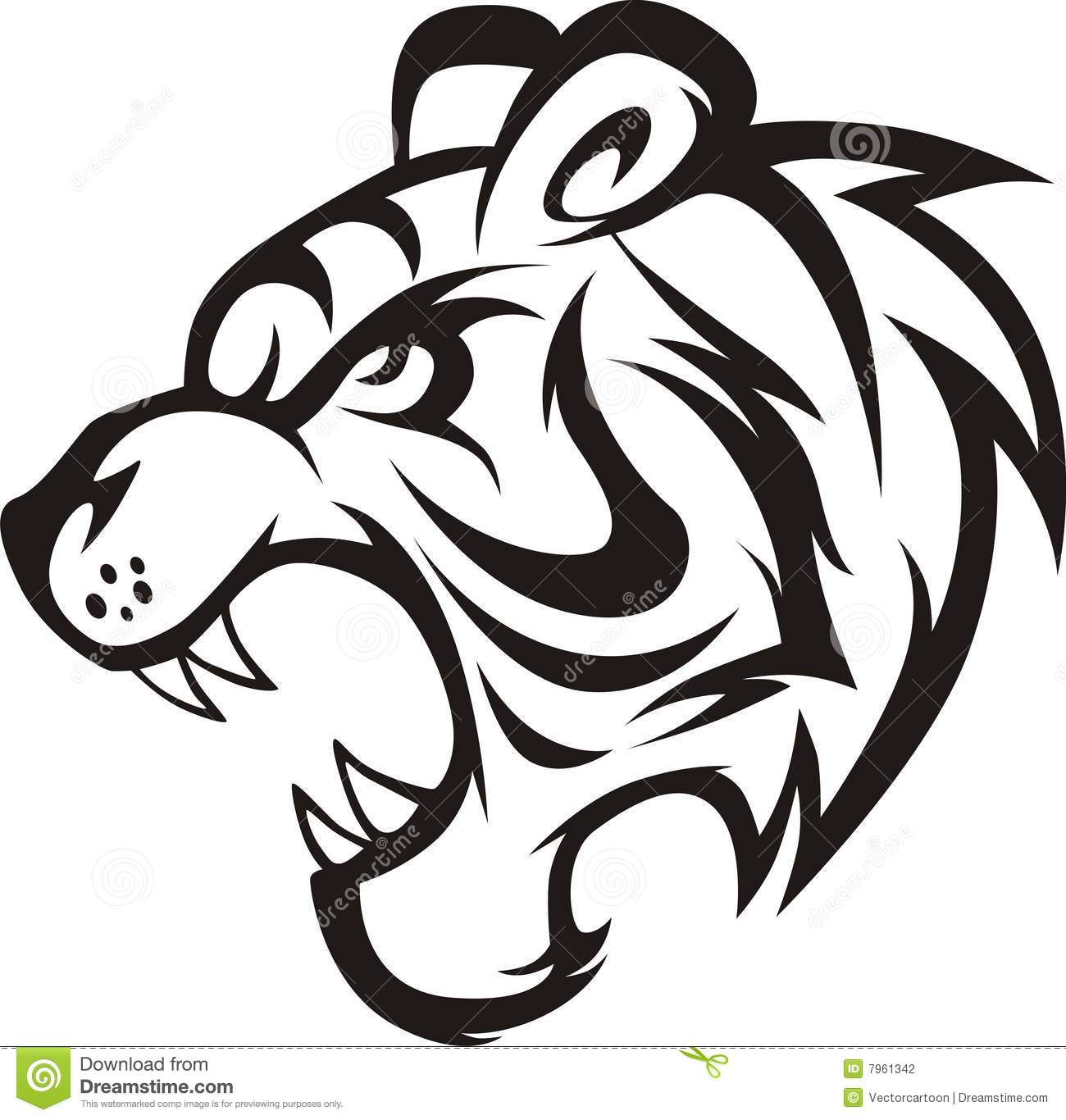 Roaring Tiger Stock Illustration Illustration Of Sumatran