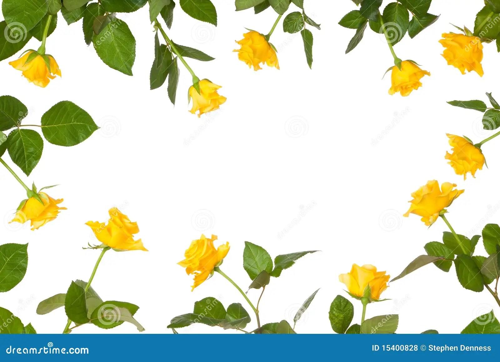 Yellow Rose Border Clip Art Free