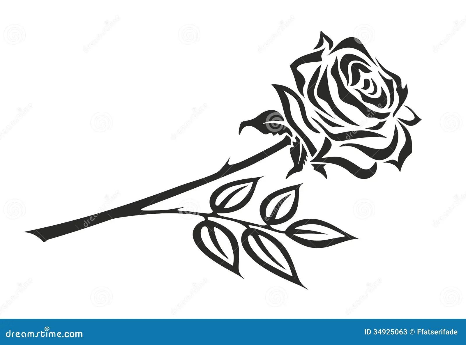 Rose Stock Illustration Image Of Blossom Christian