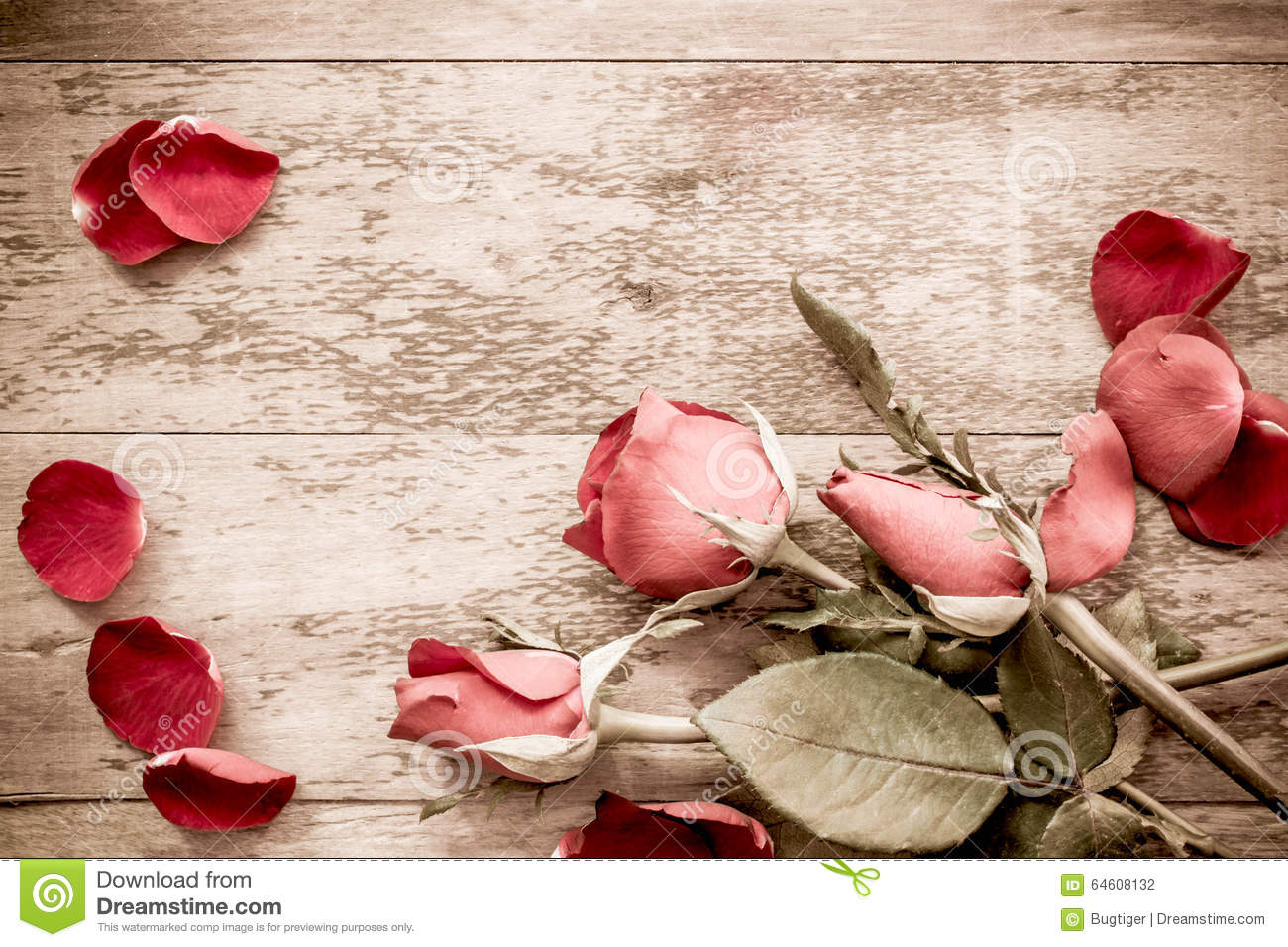Roses And A Hearts On Wooden Board Valentines Day