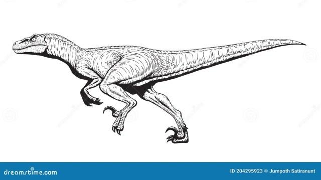 Utahraptor Dinosaurs Stock Illustrations – 28 Utahraptor Dinosaurs