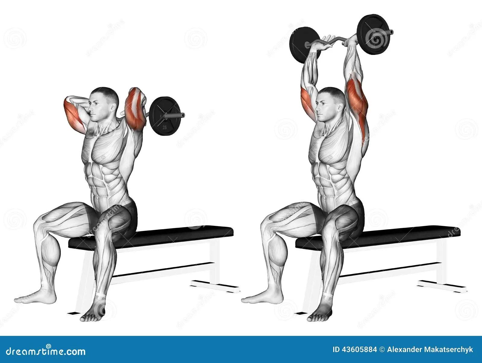 S Exercer Bras D Extension Avec Le Barbell Incurve Par
