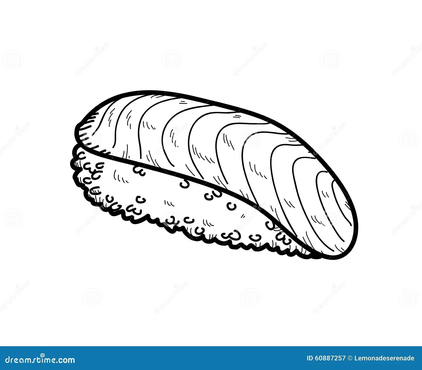 Salmon Sushi Doodle Vektor Illustrationer Illustration Av