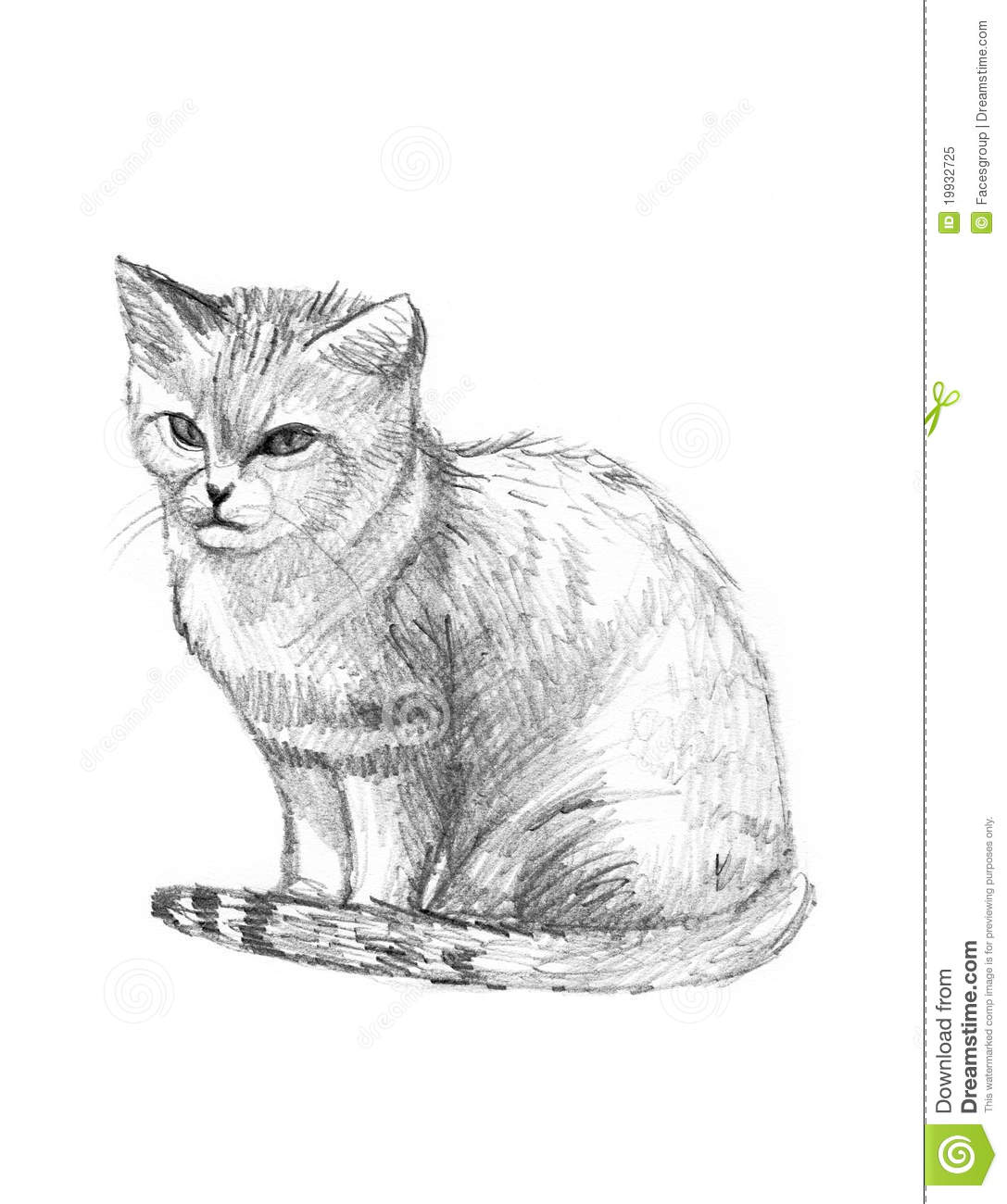 Sand Cat Drawing Sketch Royalty Free Stock Photo
