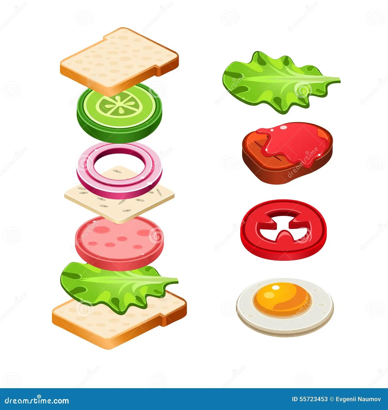 Sandwich Ingre Nts Food Illustration Royalty Free
