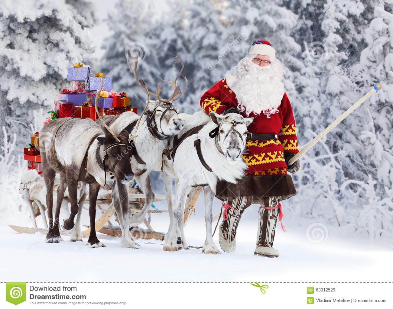 Santa Claus And His Reindeer Stock Photo