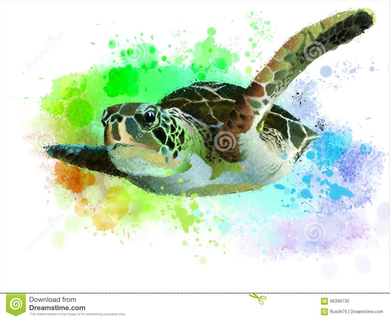 Turtle Cartoons Illustrations Amp Vector Stock Images 16473 Pictures To Download From