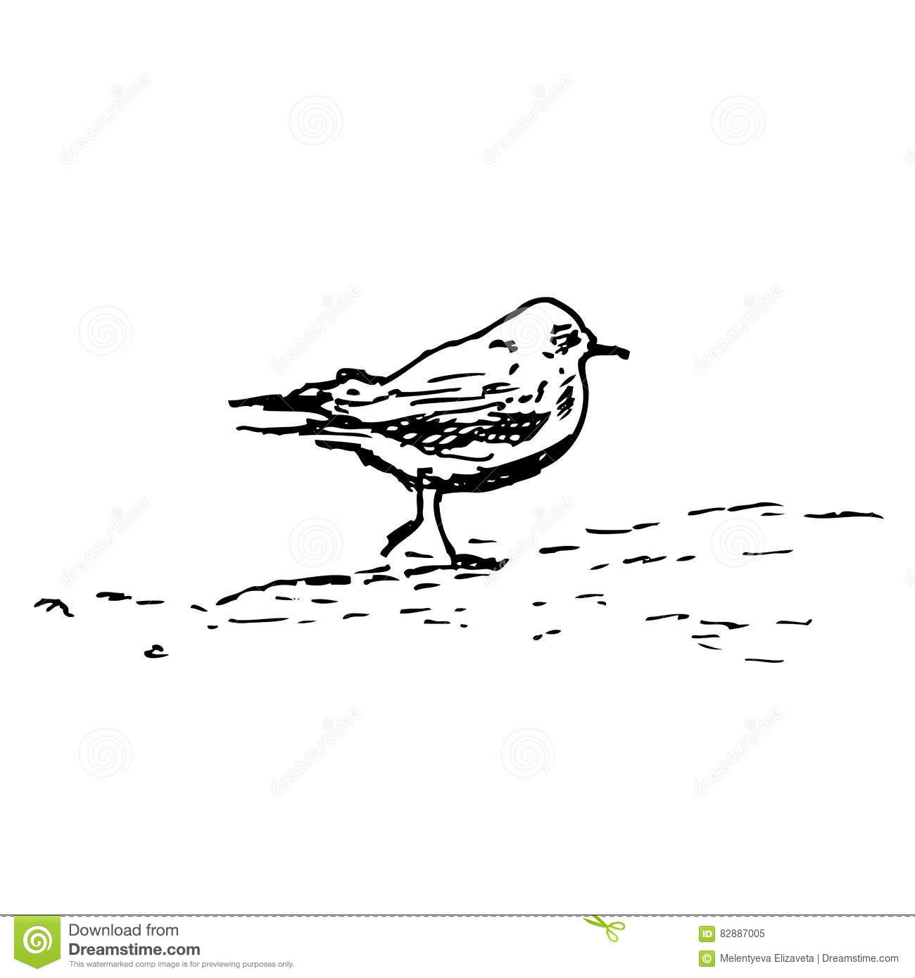 Waterfowl Cartoons Illustrations Amp Vector Stock Images