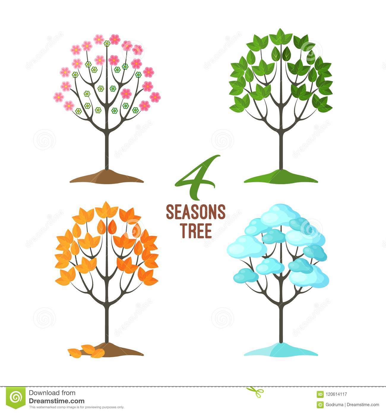 4 Seasons Trees Collection Pretty Plants In Different