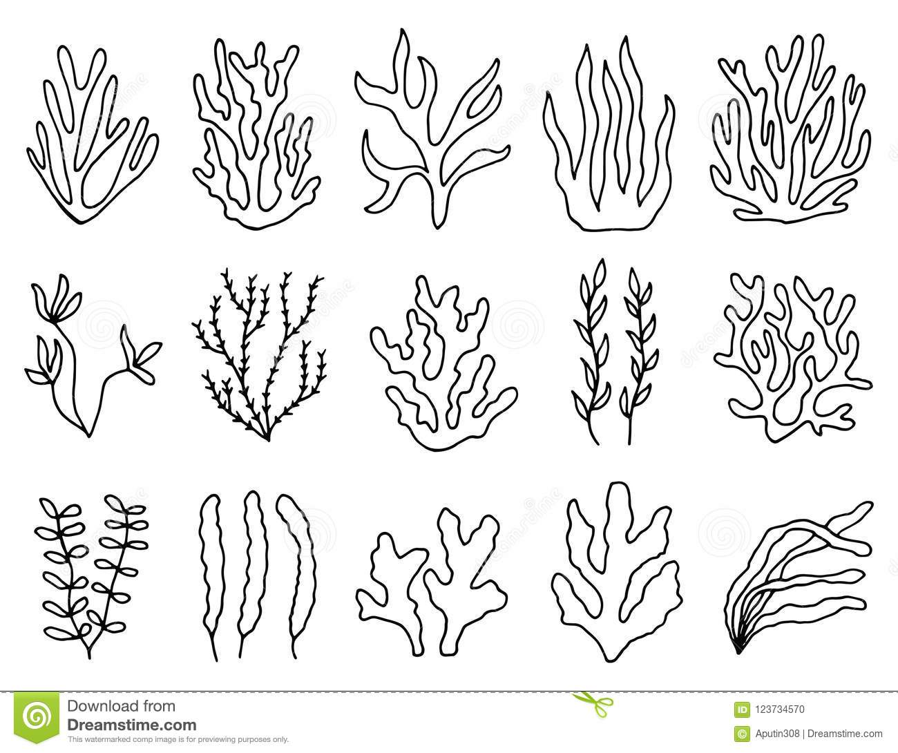 Seaweed Outline In Isolation Linear Drawing Set Of
