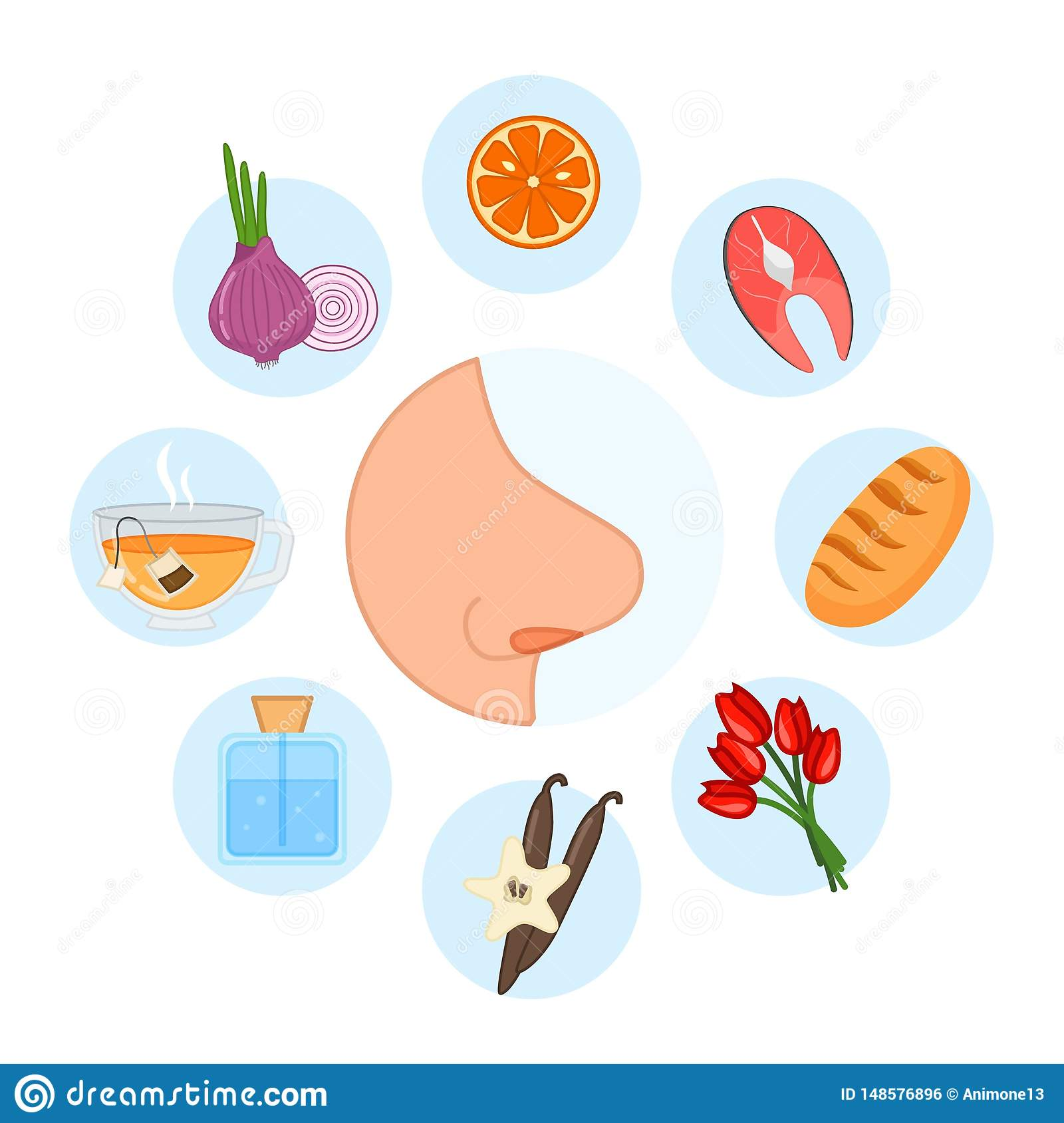 5 Sense Organs Smell Stock Vector Illustration Of Food