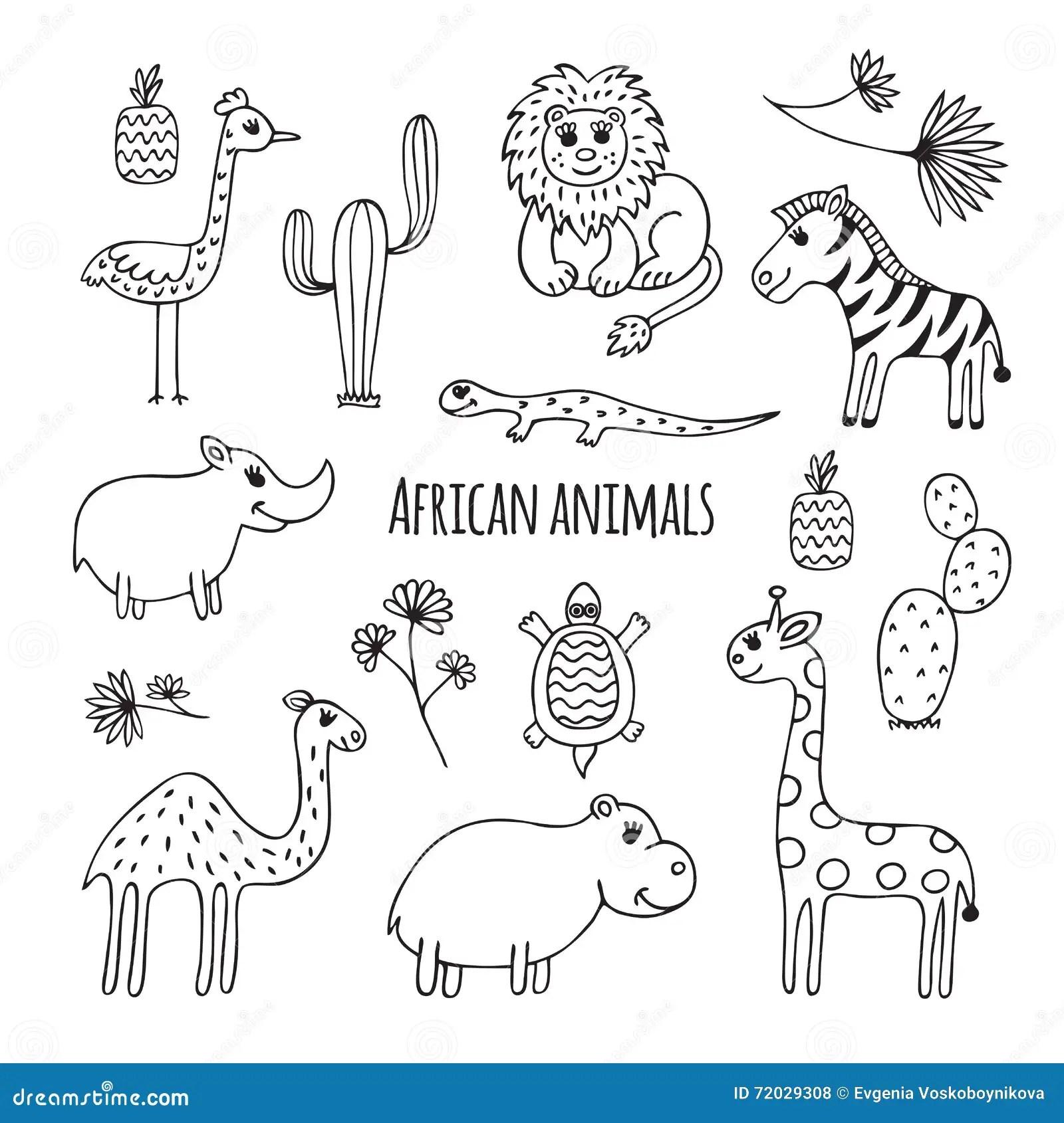 African Desert Animals Worksheet