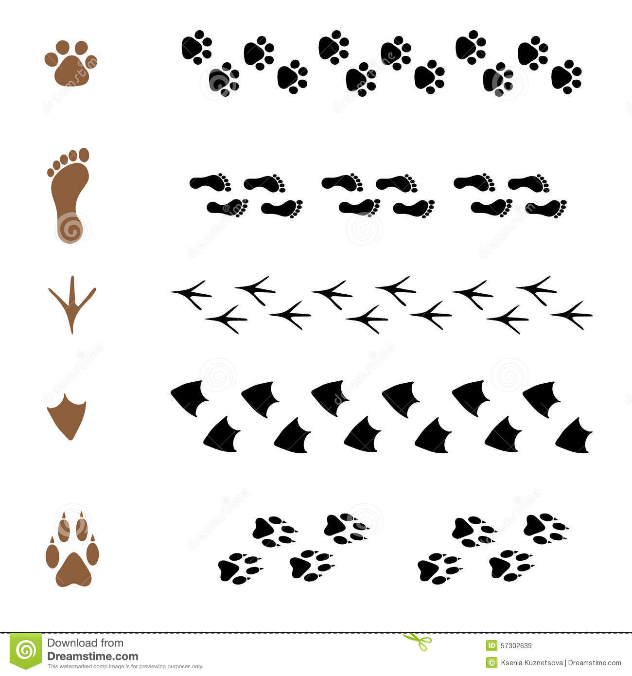 Set Of Brushes In The Form Of Animal Tracks Stock Vector