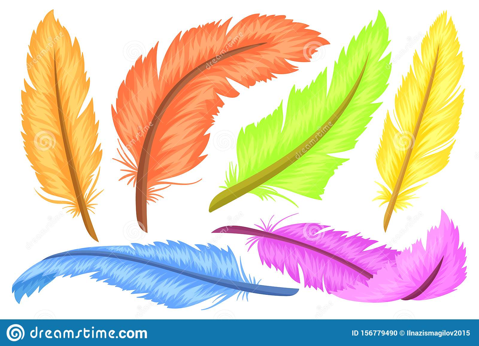 Set Of Colorful Feathers Different Shapes And Colors