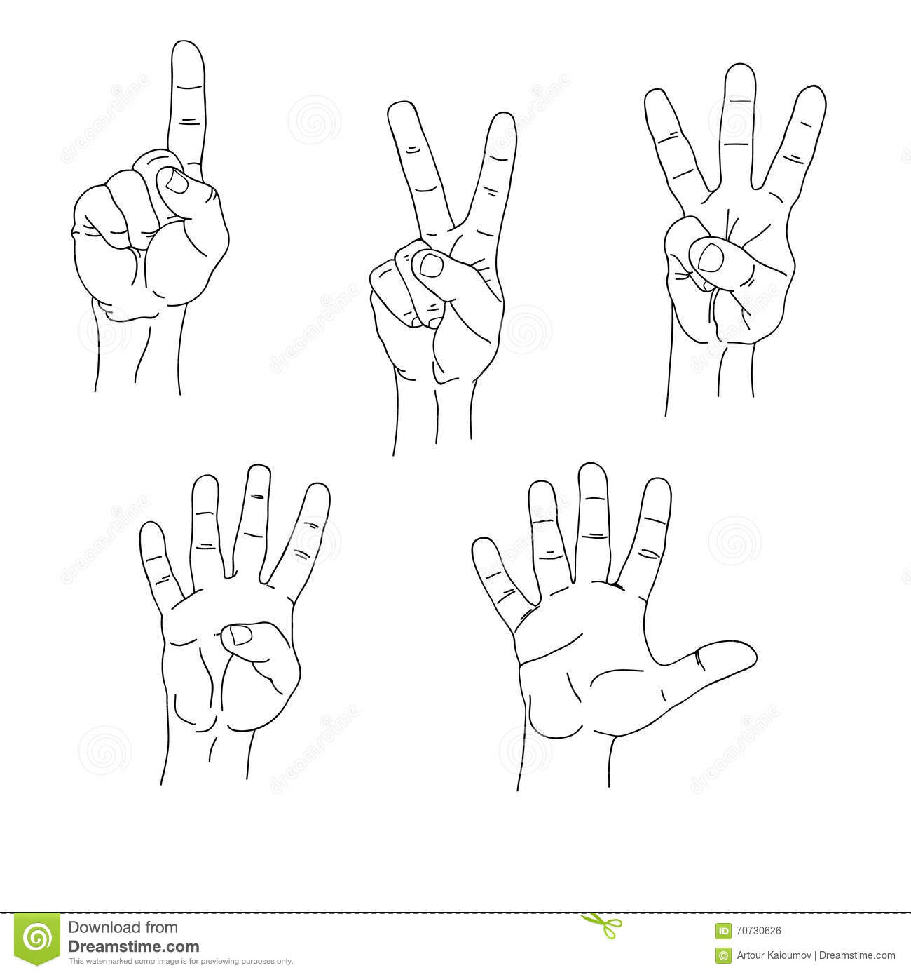 Set Of Hands Counting One To Five Inner Side Stock Vector