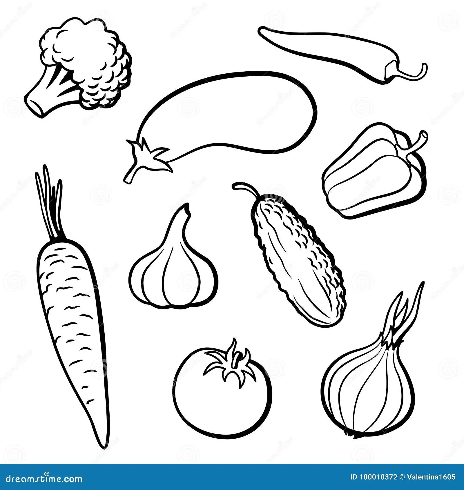 Best Vegetable Border Clipartion Com