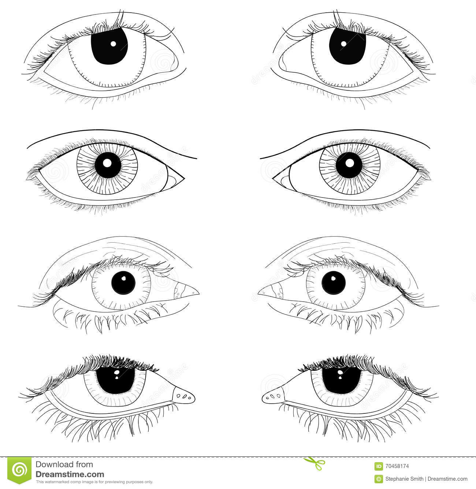 Set Of Realistic Eyes Hand Drawn Line Art Illustrations No