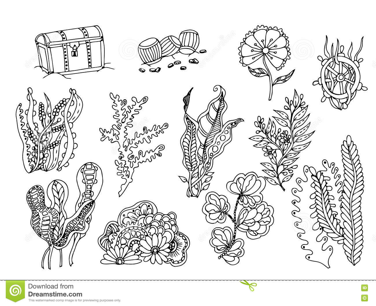 Set Of Seaweed Vector Image In Black And White Stock