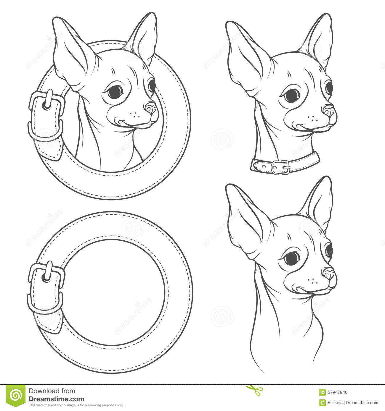 A Set Of Vector Drawing Of The Chihuahua In The Collar