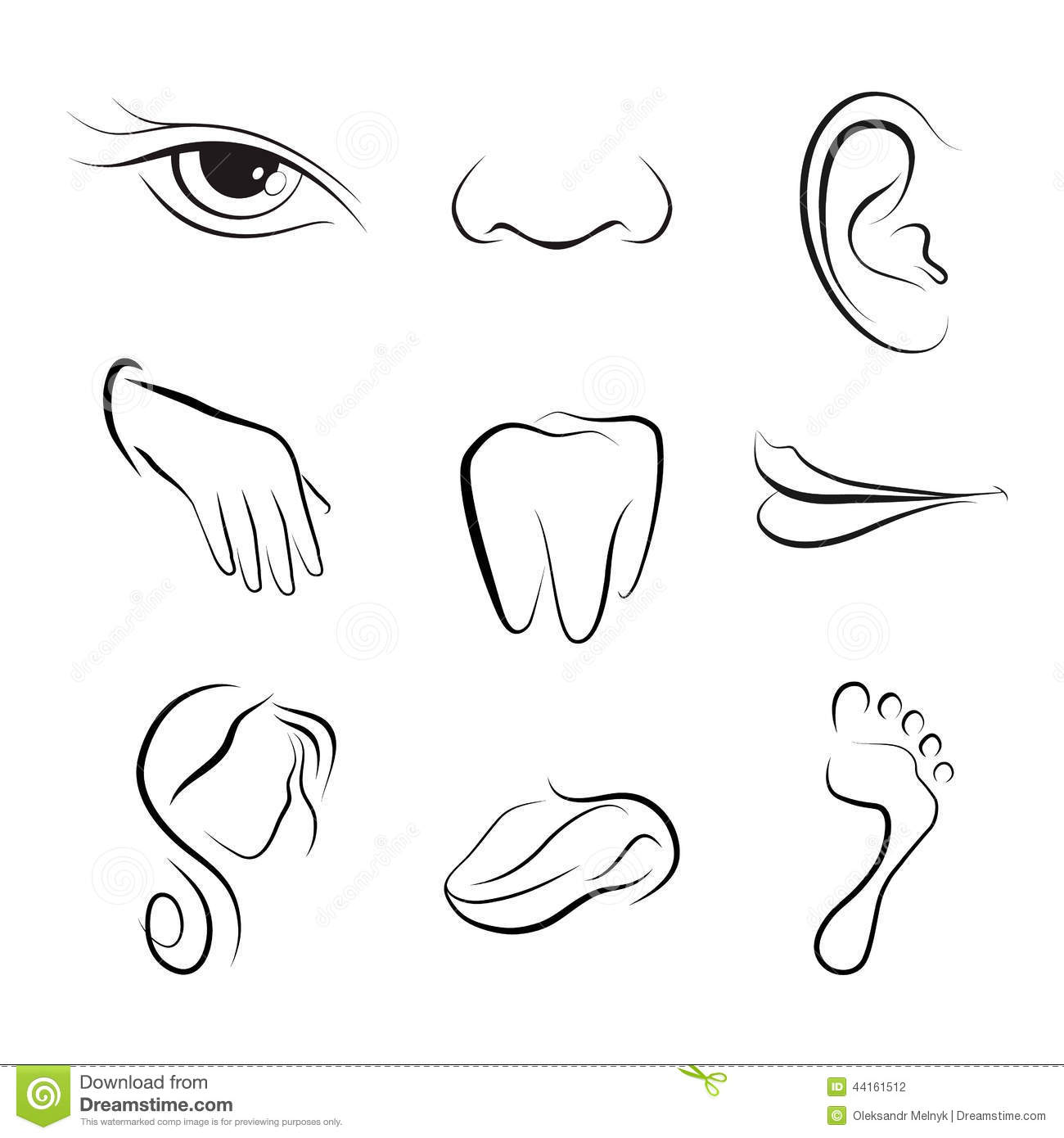 Set Of Vector Icons Human Body Parts Stock Vector