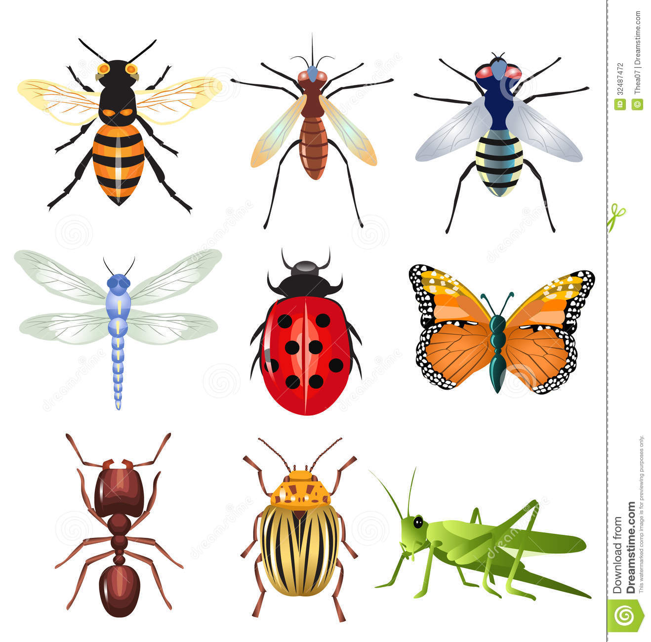 Set Of Vector Insects Stock Vector Illustration Of