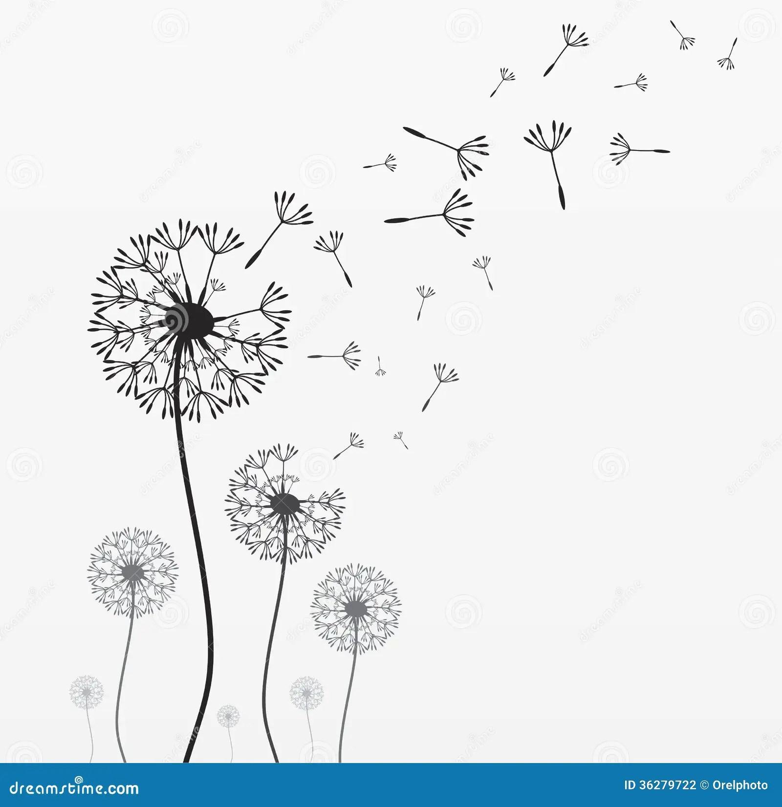Seven Vector Dandelions Stock Photography