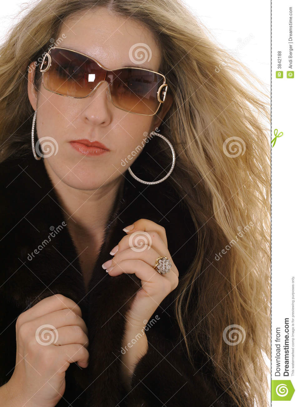 Rich Woman Stock Photo Image Of Gorgeous Beauty