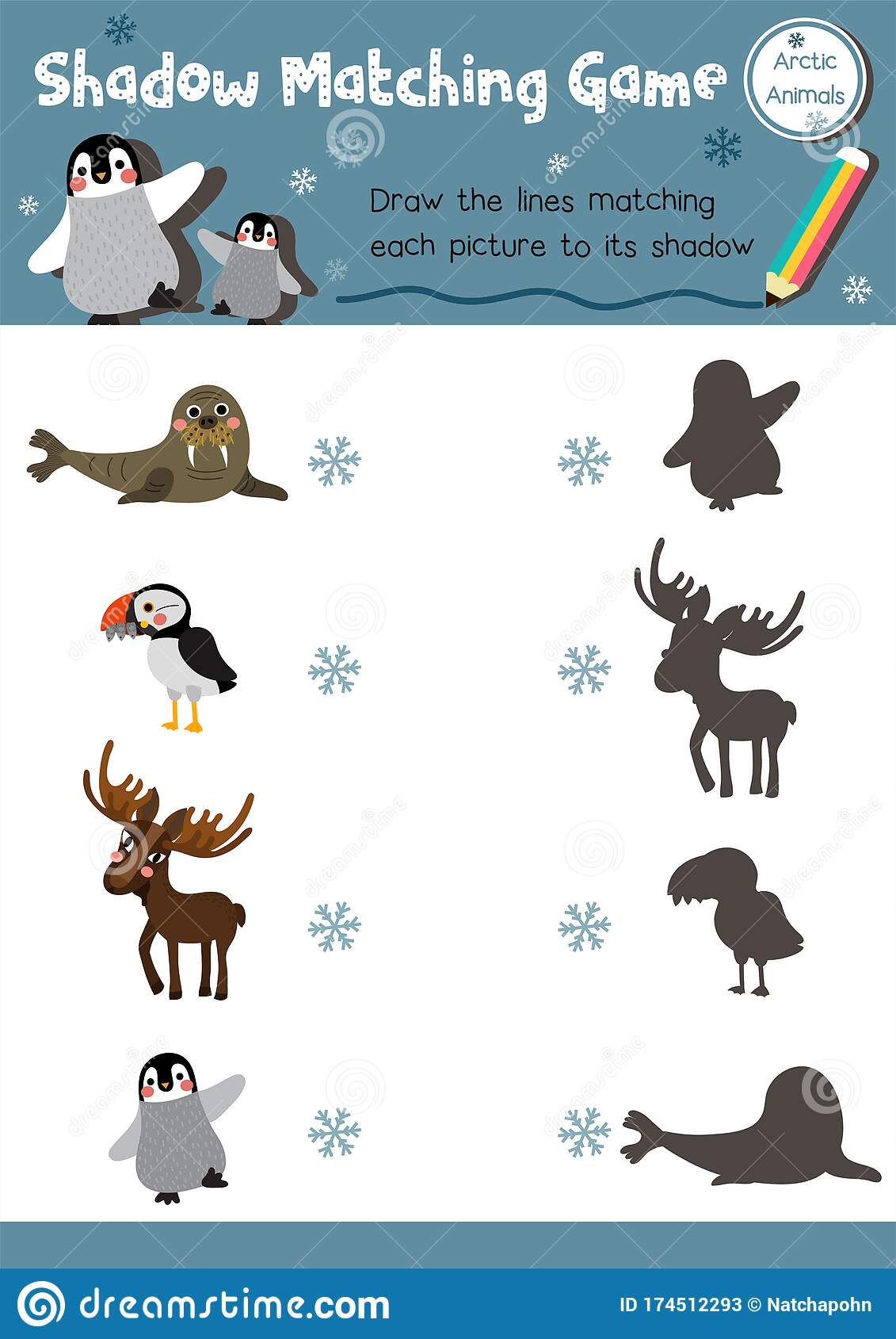 Shadow Matching Game Arctic Animal Stock Vector