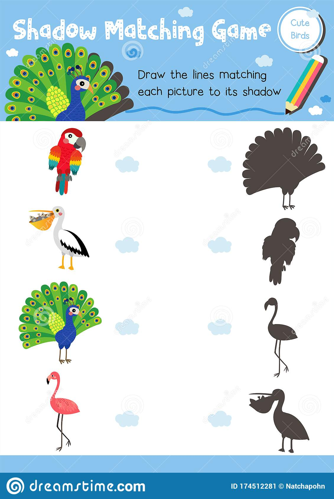 Shadow Matching Game Bird Animal Stock Vector