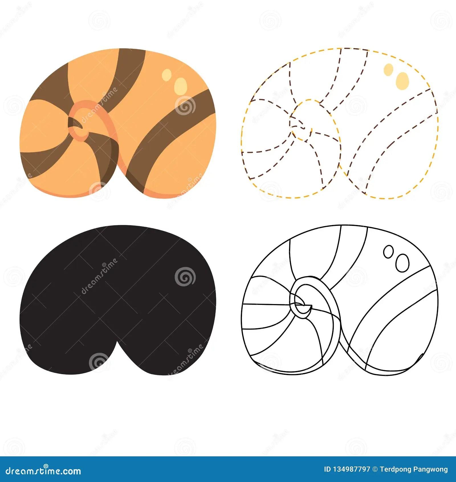 Shell Worksheet Vector Design Stock Vector