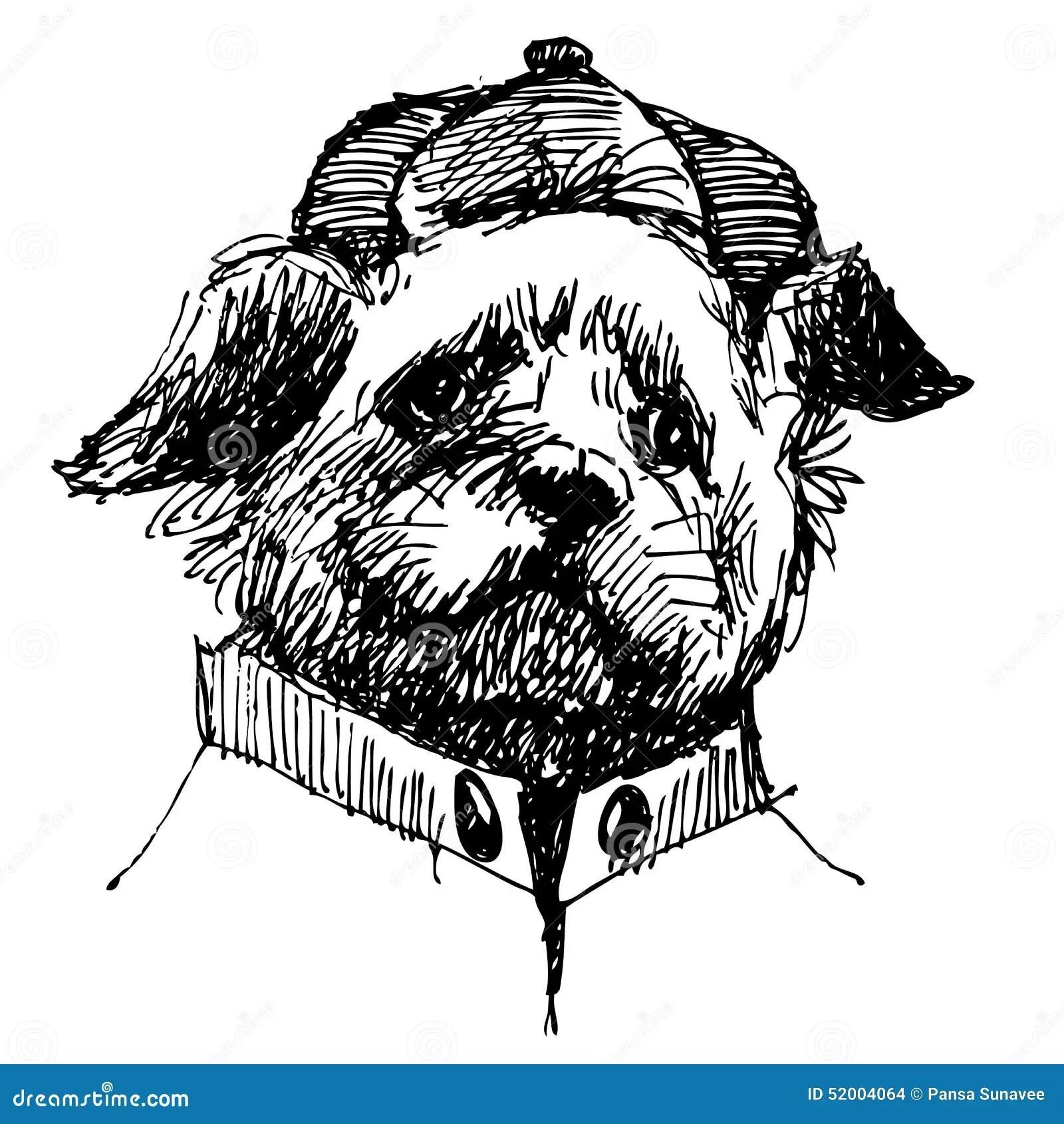 Shih Tzu Stock Vector Illustration Of Animal Black