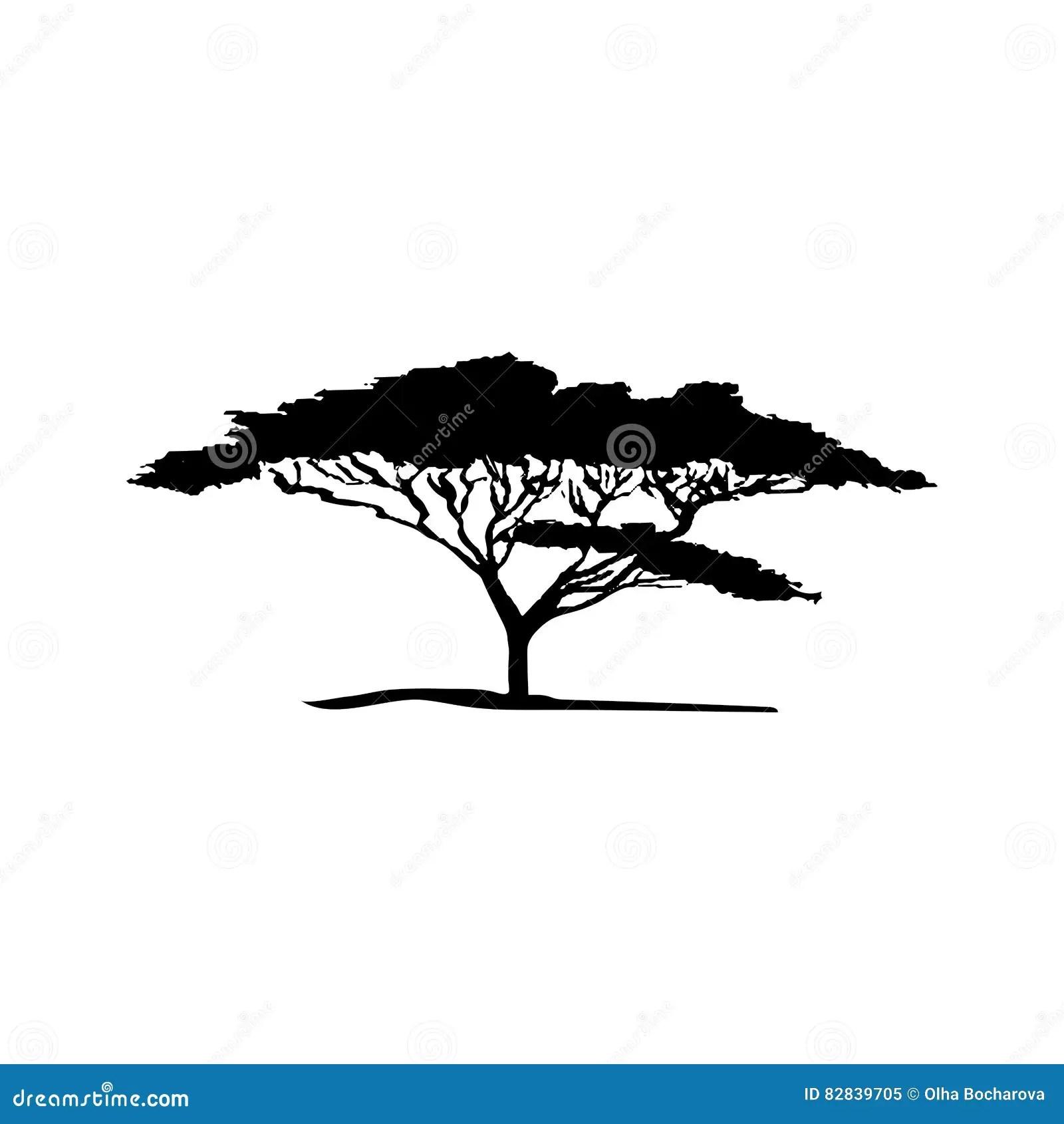 Silhouette De Vecteur D Arbre D Acacia Illustration De