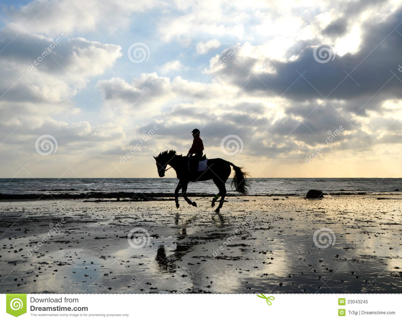 Silhouette Of Horse Rider Galloping On The Beach Royalty