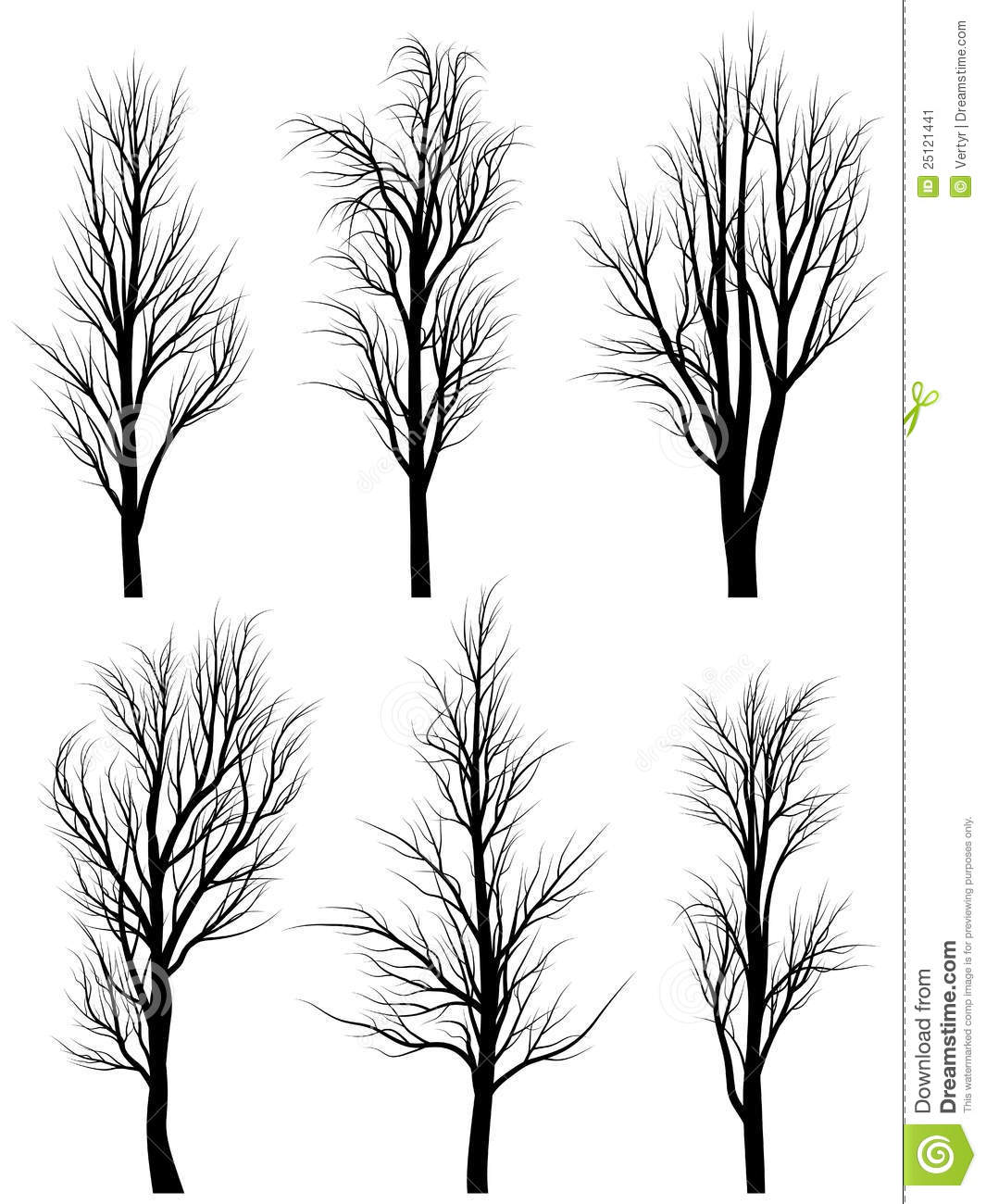 Silhouettes Of Birch Trees Without Leaves Stock Image