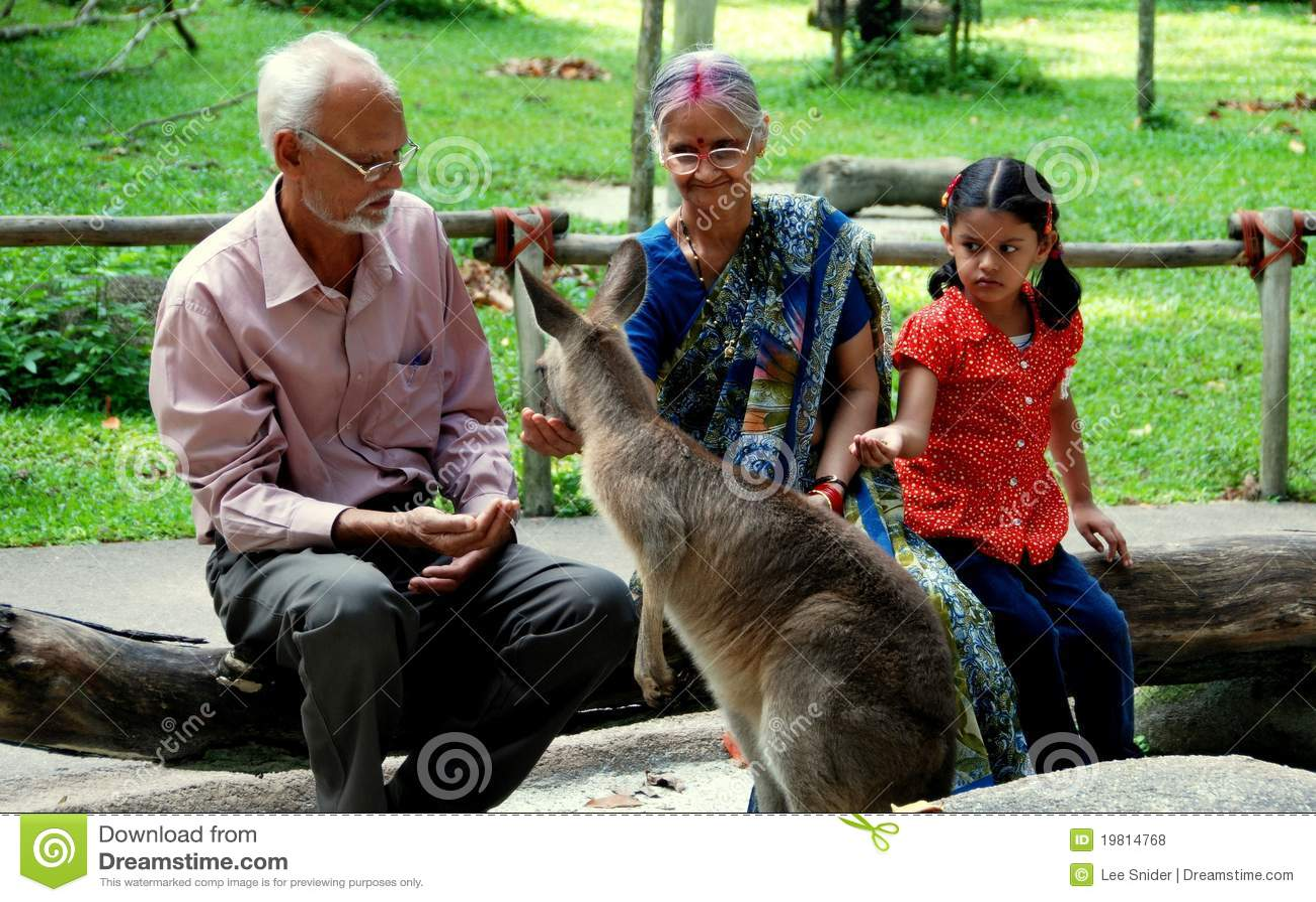 Singapore Indian Family Feeding Kangaroo Editorial Stock
