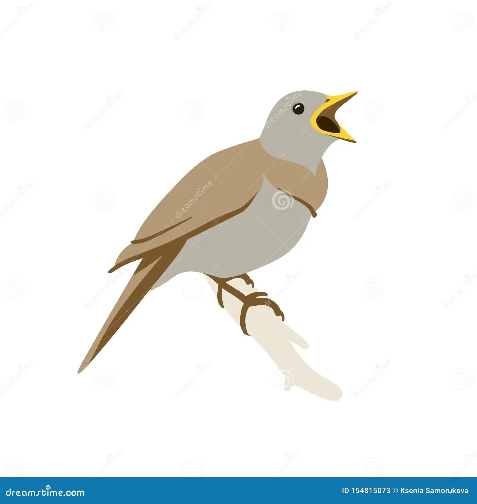 Nightingale Stock Illustration