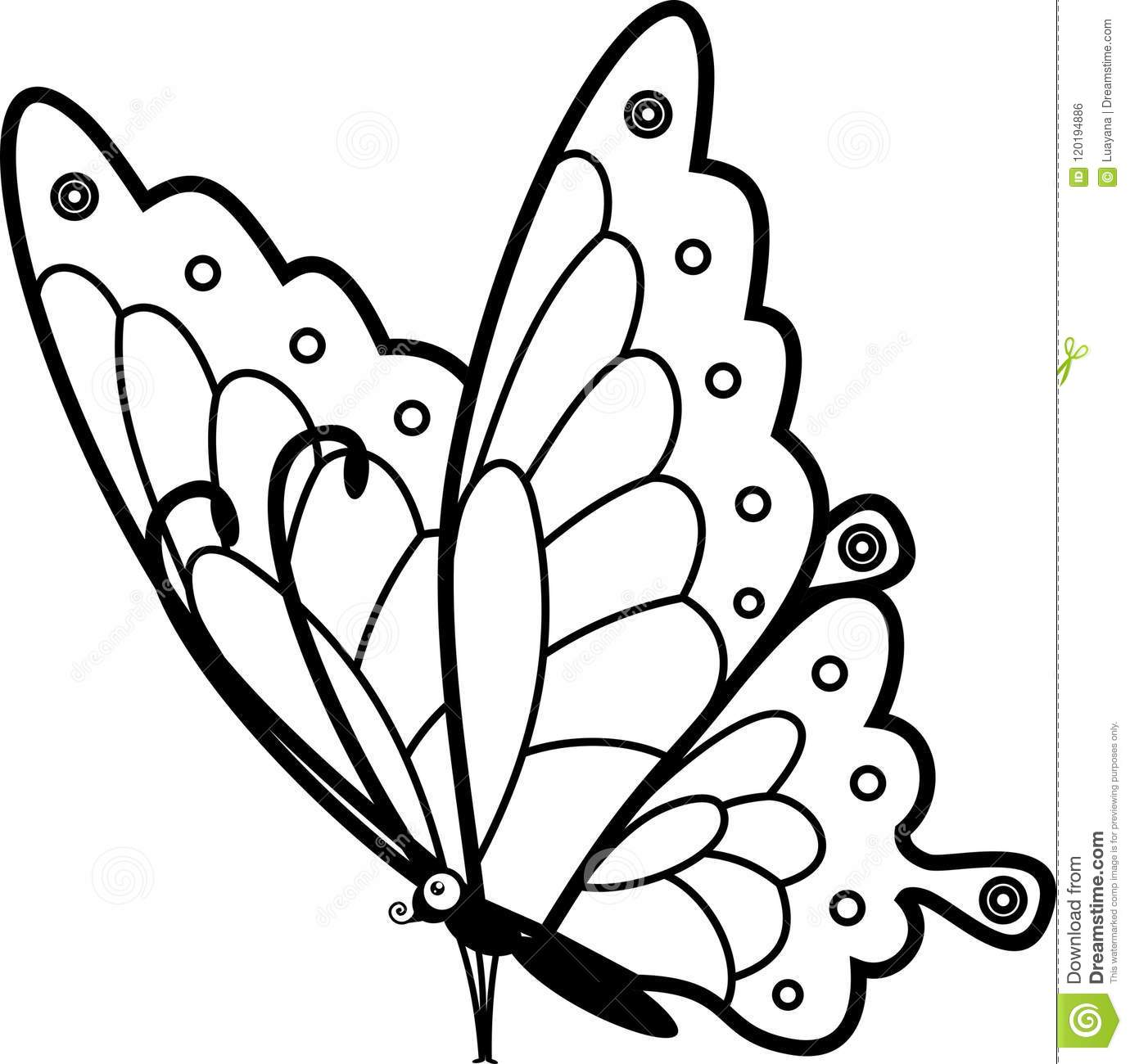 Sitting Butterfly Coloring Page Stock Vector Illustration Of Flat Background 120194886