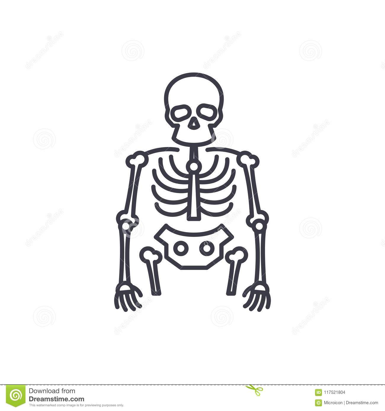 Bones Of The Foot Labeled Cartoon Vector