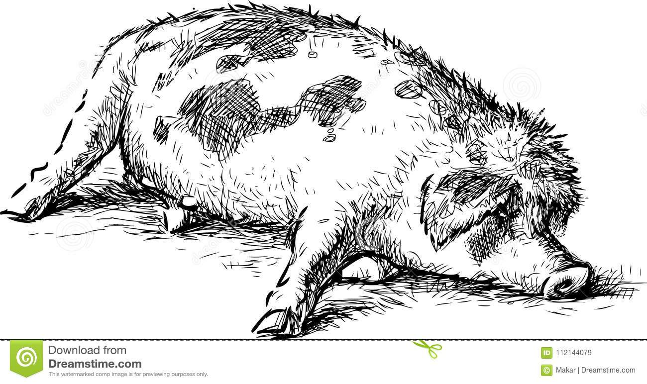 Cartoon Piglet Sleeping