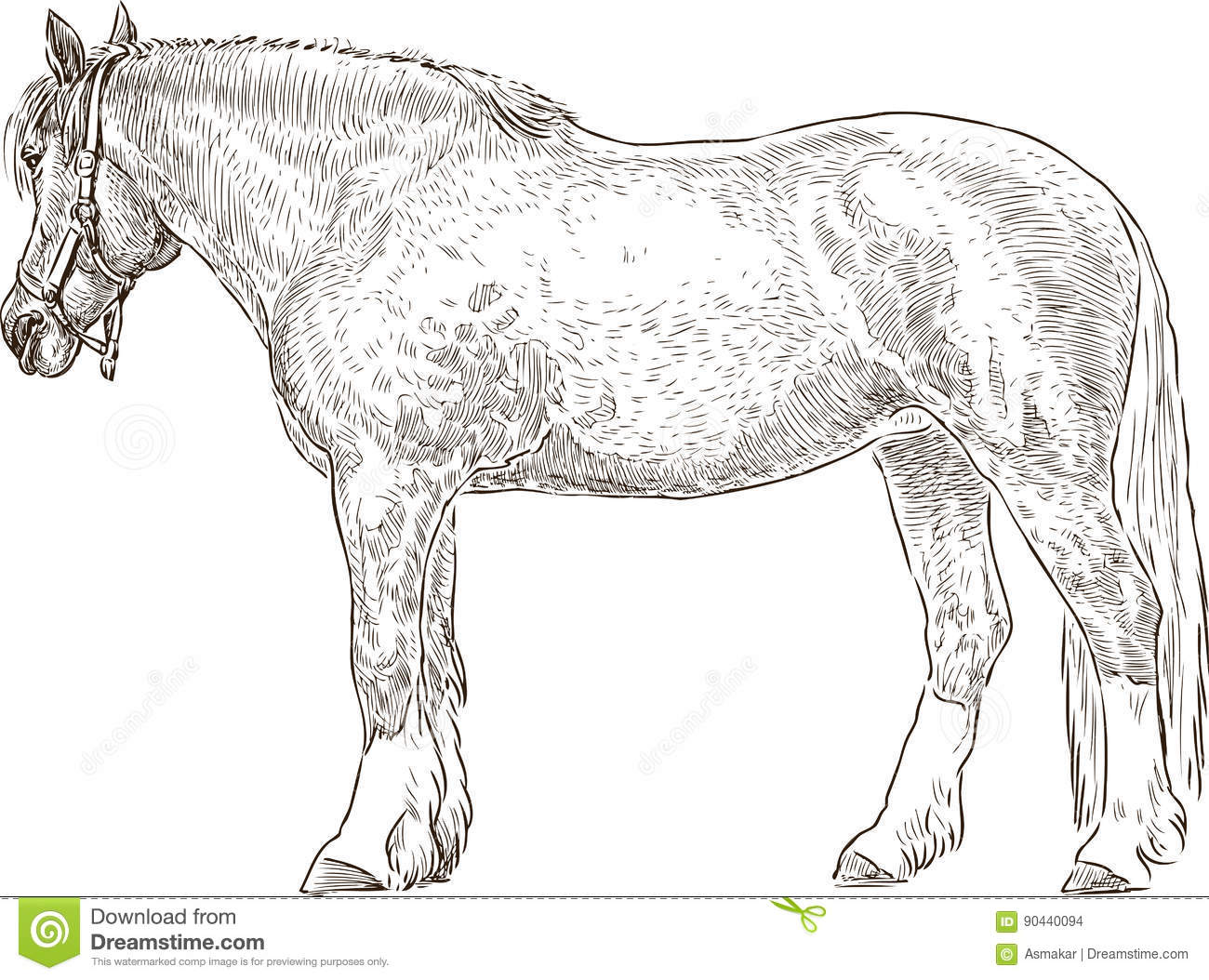 Sketch Of A Tired Harnessed Horse Stock Vector