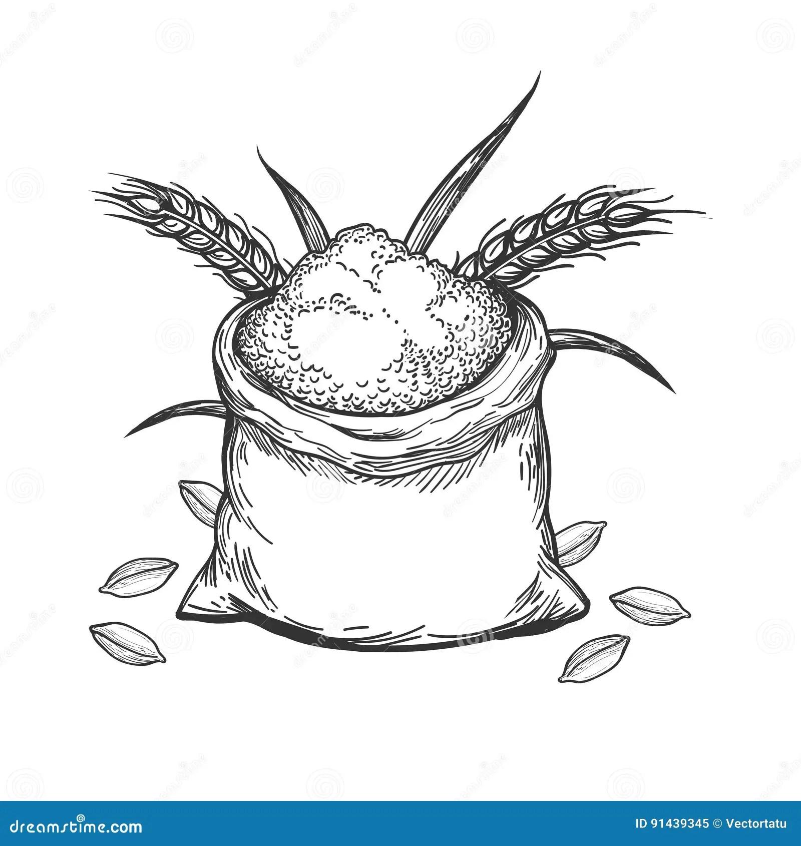 Cartoon Whole Grain Bread