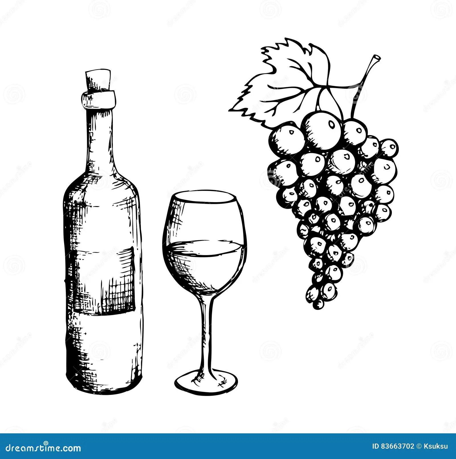 Wein Und Trauben Abbildung