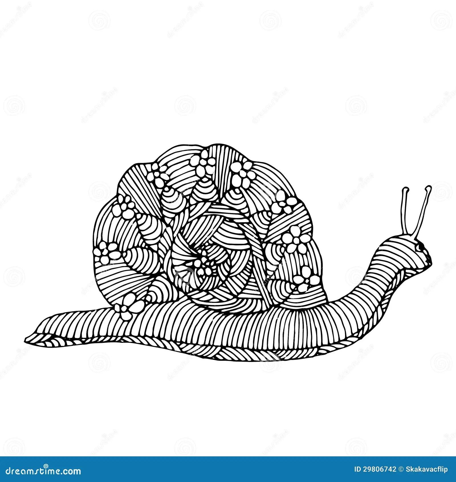 Snail Illustration Stock Photography