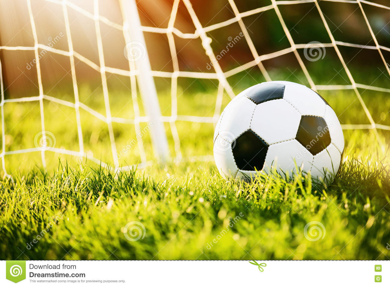 Soccer Ball In Goal Stock Photo Image Of Activity Single